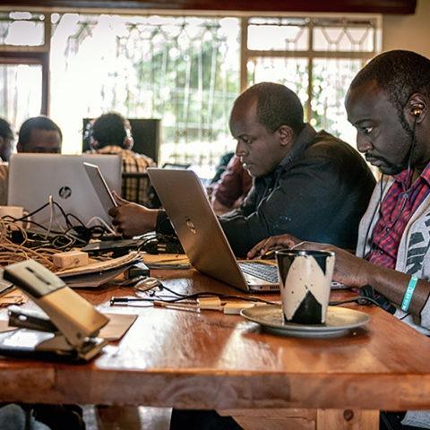 Développeurs, Lynk ©Backdrop
